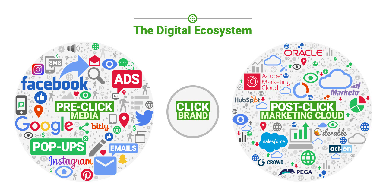 The Digital Ecosystem